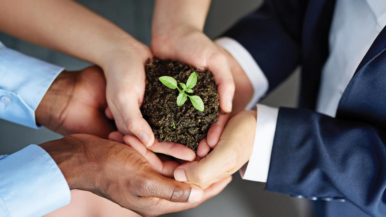 hands gathered together holding a seedling representing lending solutions.